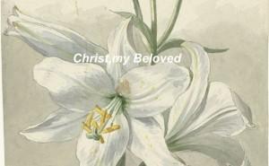 09 christ my beloved